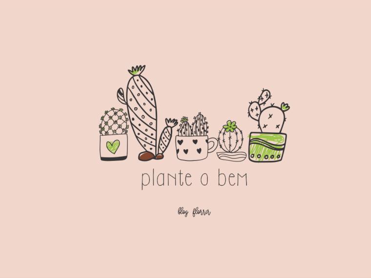 Cactus_florrir_1024x768